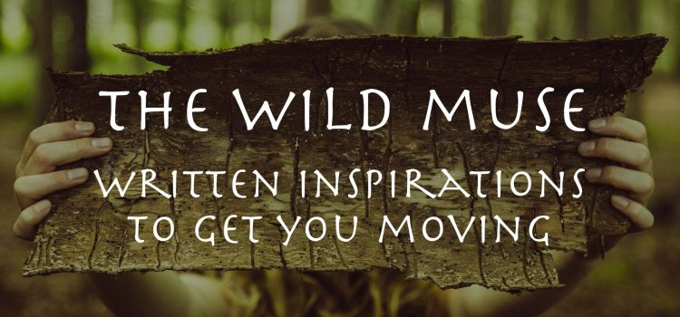 cropped-the-wild-muse-words-web-res-copy.jpg
